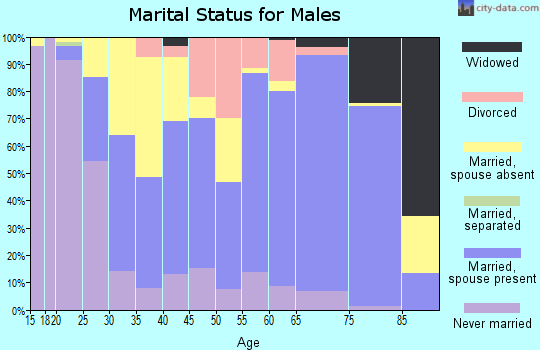 Zip code 49103 marital status for males