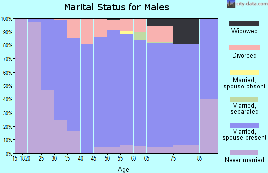 Zip code 49240 marital status for males
