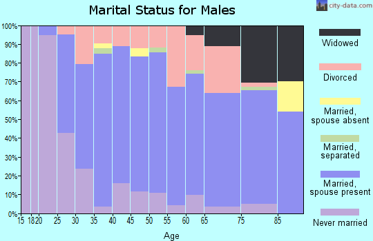Zip code 49247 marital status for males
