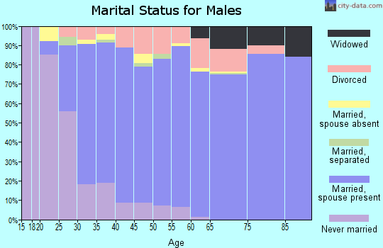 Zip code 49250 marital status for males