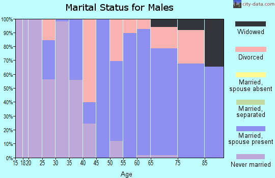 Zip code 49253 marital status for males