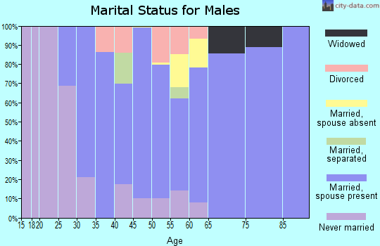 Zip code 49267 marital status for males