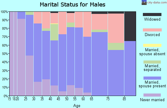 Zip code 49274 marital status for males