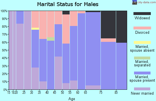 Zip code 49326 marital status for males