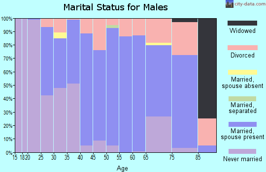 Zip code 49343 marital status for males