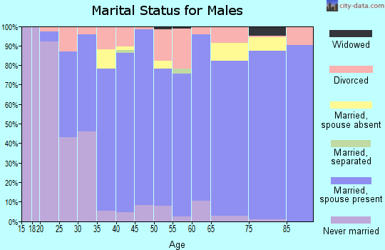 Zip code 49404 marital status for males
