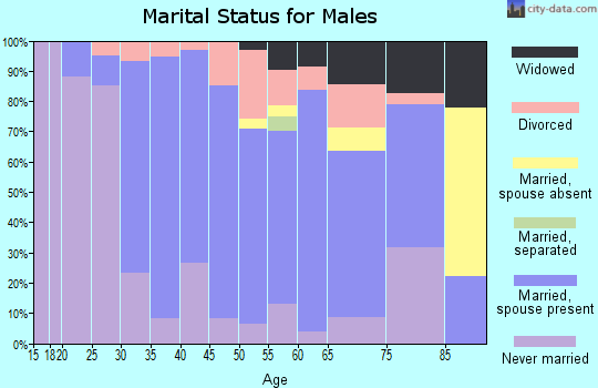 Zip code 49411 marital status for males