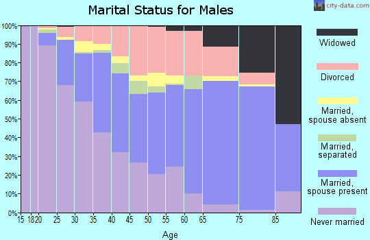 Zip code 49444 marital status for males