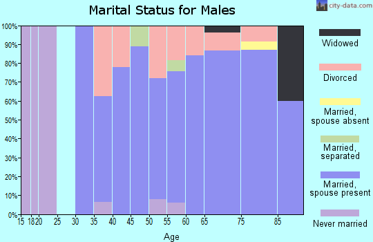 Zip code 49613 marital status for males