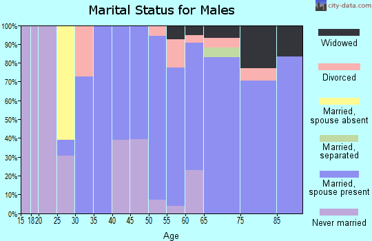 Zip code 49630 marital status for males