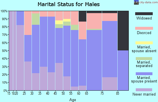 Zip code 49632 marital status for males