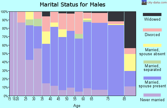 Zip code 49635 marital status for males