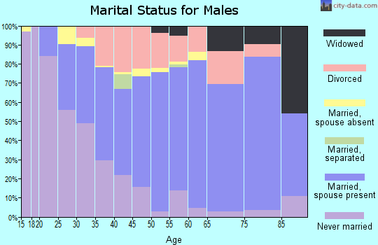 Zip code 49677 marital status for males