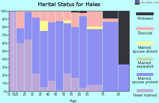 Zip code 49713 marital status for males