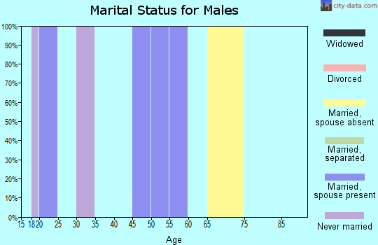 Zip code 49764 marital status for males