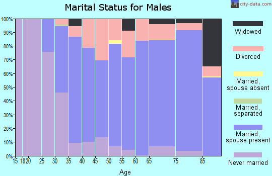 Zip code 49837 marital status for males