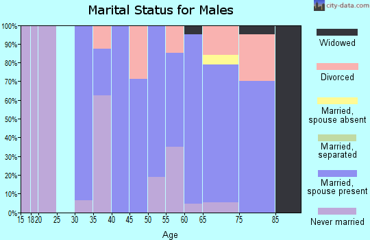 Zip code 49861 marital status for males