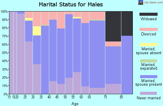 Zip code 49931 marital status for males
