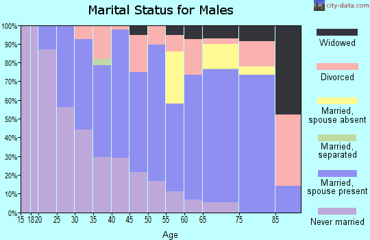 Zip code 49946 marital status for males