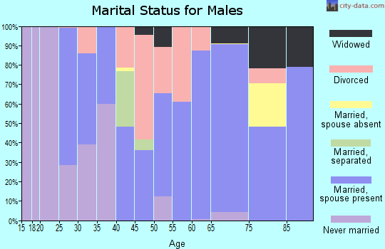 Zip code 50213 marital status for males
