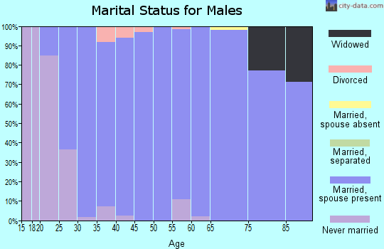 Zip code 50323 marital status for males