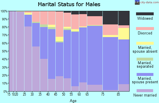 Zip code 50501 marital status for males