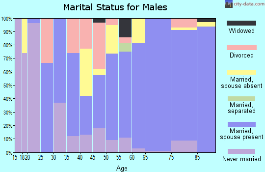 Zip code 50533 marital status for males