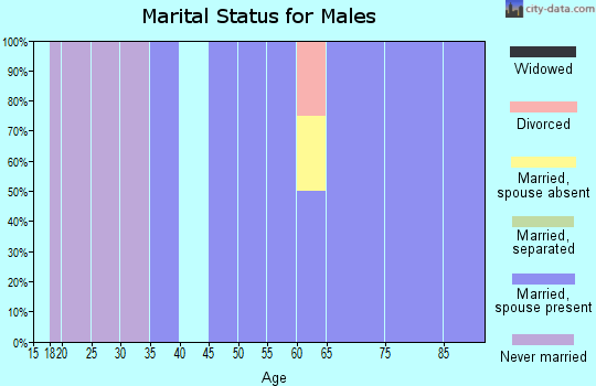 Zip code 51008 marital status for males