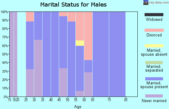 Zip code 51029 marital status for males