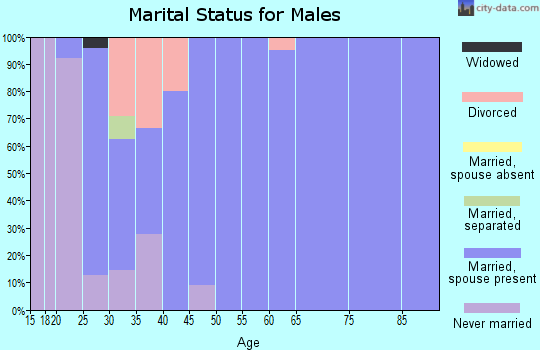 Zip code 51234 marital status for males