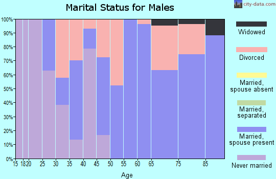 Zip code 51331 marital status for males