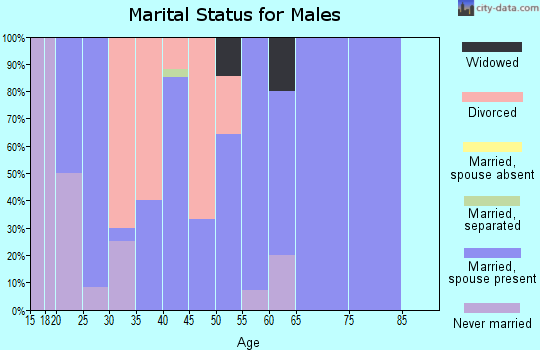 Zip code 51345 marital status for males