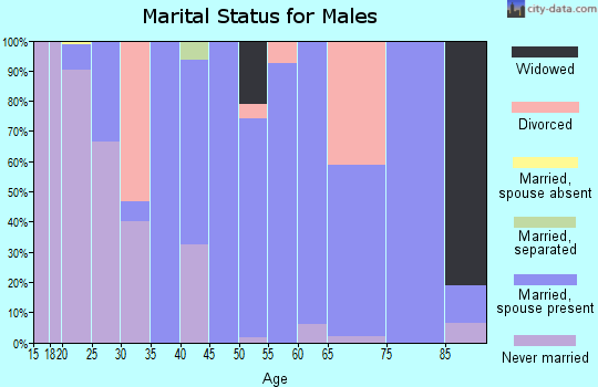 Zip code 51347 marital status for males