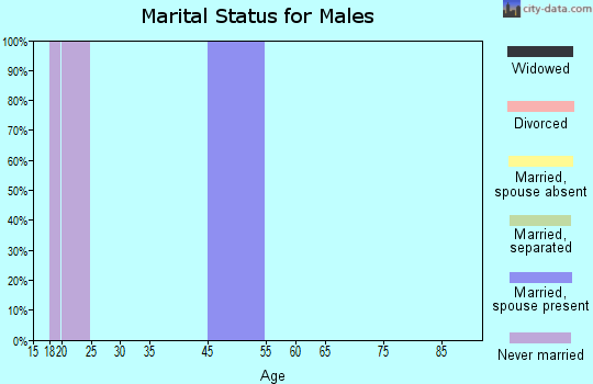 Zip code 51502 marital status for males