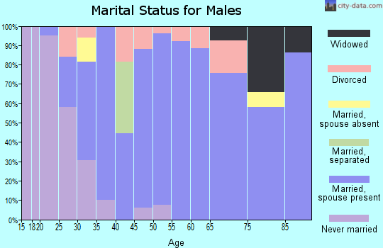 Zip code 51577 marital status for males