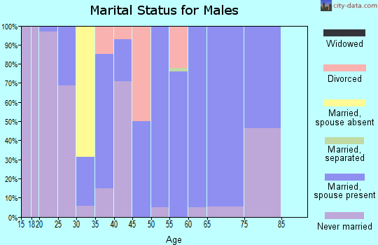 Zip code 52039 marital status for males
