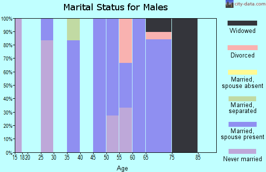 Zip code 52221 marital status for males