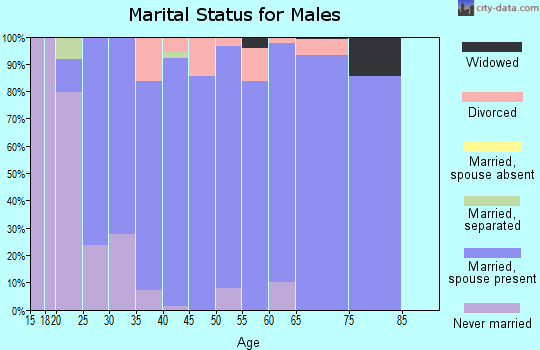Zip code 52338 marital status for males
