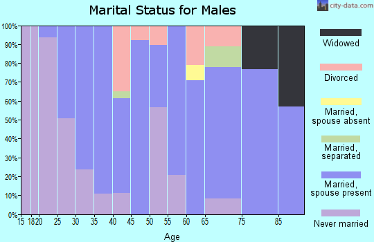 Zip code 52345 marital status for males