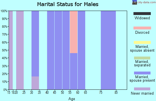 Zip code 52619 marital status for males