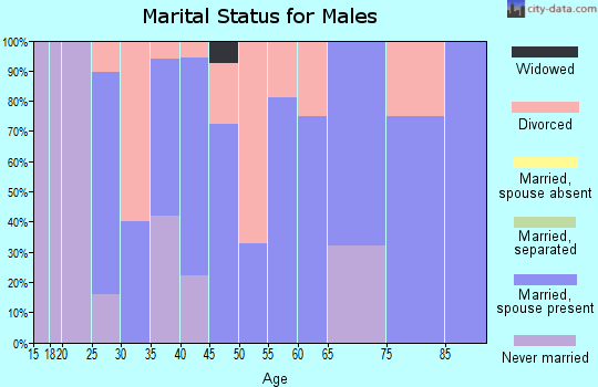 Zip code 52720 marital status for males