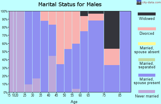 Zip code 52768 marital status for males