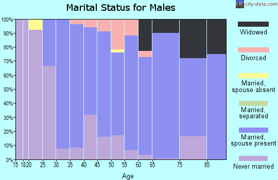 Zip code 53033 marital status for males