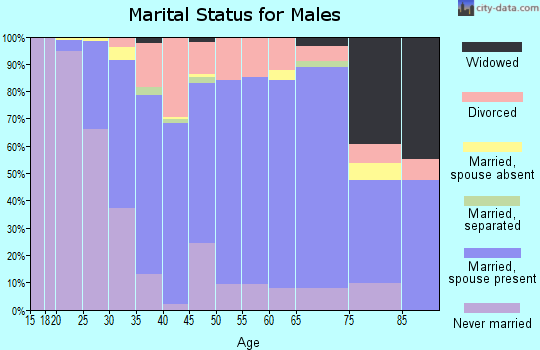 Zip code 53074 marital status for males
