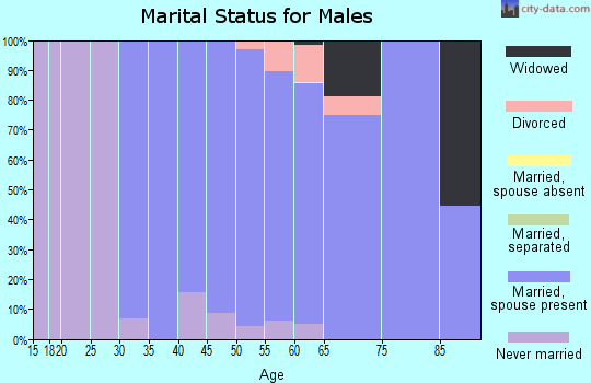 Zip code 53076 marital status for males