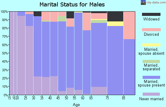Zip code 53168 marital status for males