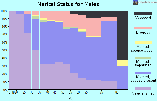 Zip code 53207 marital status for males