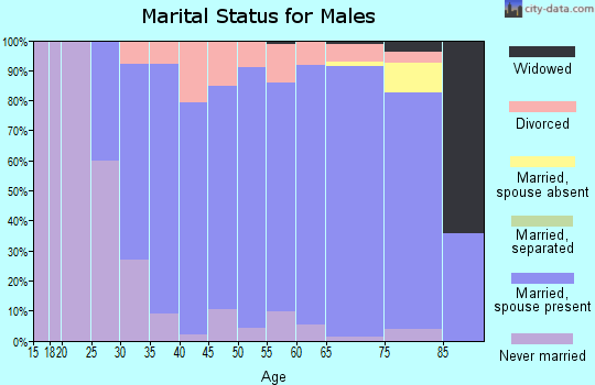 Zip code 53528 marital status for males