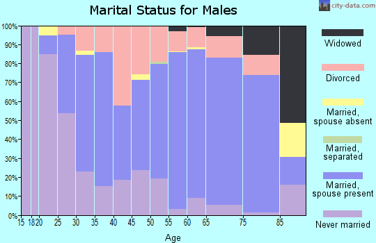 Zip code 53534 marital status for males