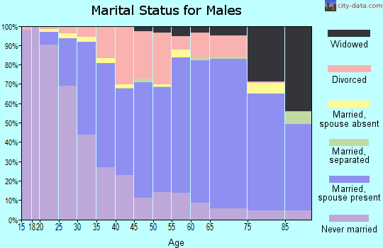 Zip code 53545 marital status for males